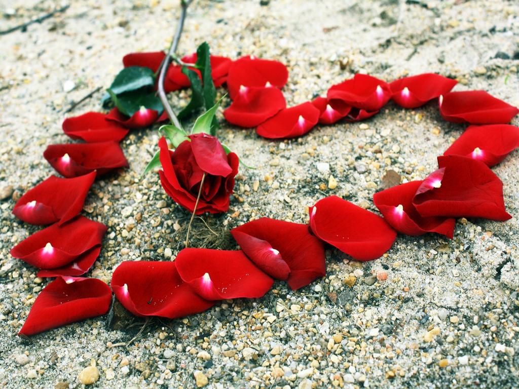 VOODOO LOVE SPELL FREE